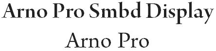 Blogbeitrag Typografie Arno Pro