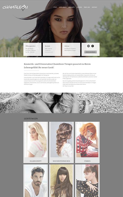 profi-homepage_Chamäleon_Kreative-Berufe