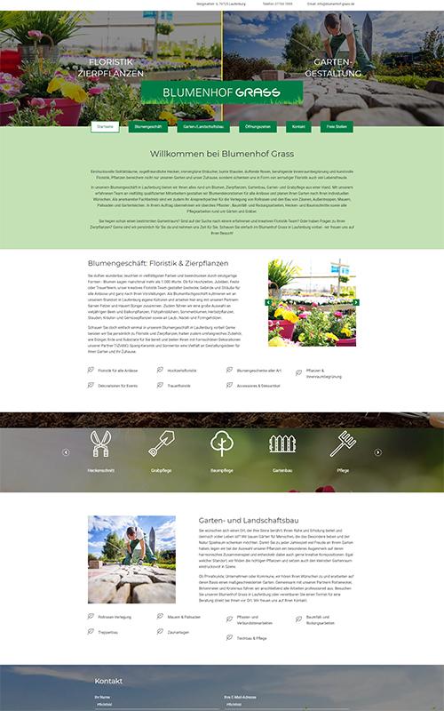 Blumenhof Grass